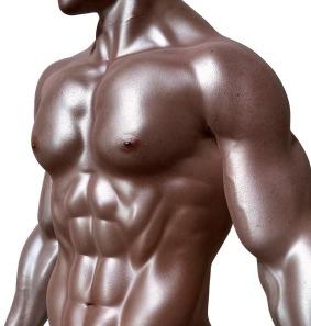 bodybuilder-331670_640